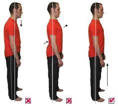 Postura Corporal Educación Física Plus Ef
