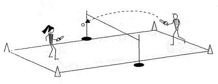 10.6. cestacrosse-juego-deportivo-cancha-dividida.jpg